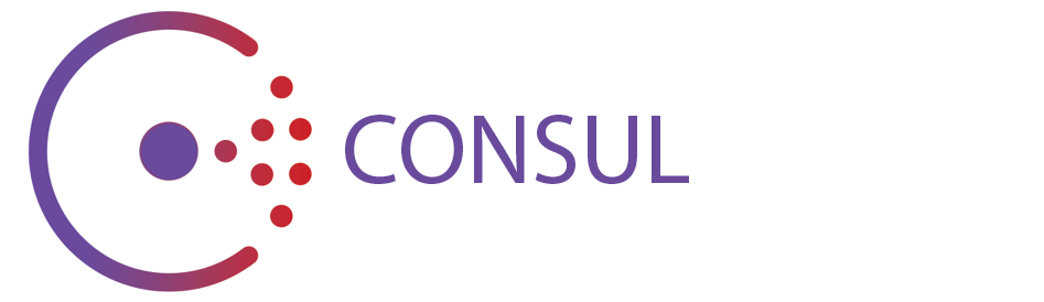First look at the key value store in consul ales nosek for Consul http health check